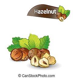 Hazelnut kernel with green leaves set