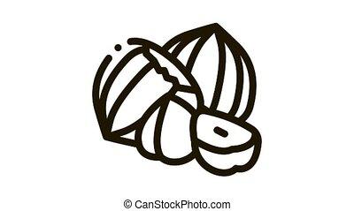 hazelnut nut Icon Animation. black hazelnut nut animated icon on white background
