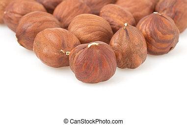 hazelnut nut on white