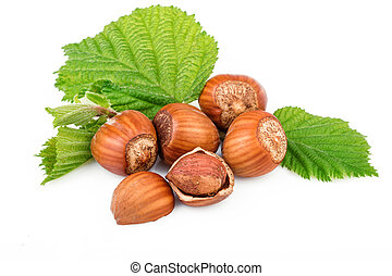 filbert nuts with leaves on white background