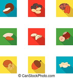 Hazelnut, pistachios, peanuts and other types of nuts.Different types of nuts set collection icons in flat style vector symbol stock illustration web.