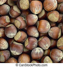 Hazelnut toasted raw autumn food, pattern background texture.