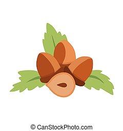 Hazelnuts. Flat Design Vector Icon Illustration, isolated on white.
