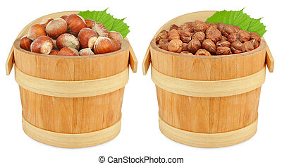 hazelnuts in a bucket isolated on white