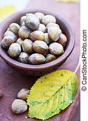 Hazelnuts in a ceramic bowl