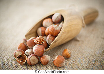 hazelnuts in shell on the table of burlap