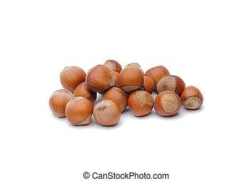 Isolated hazelnuts