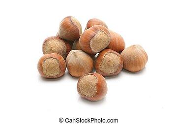 Hazelnuts. isolated on a white background