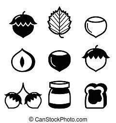 Hazelnuts, nuts - food vector icons