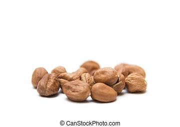 Hazelnuts nuts isolated on the white background