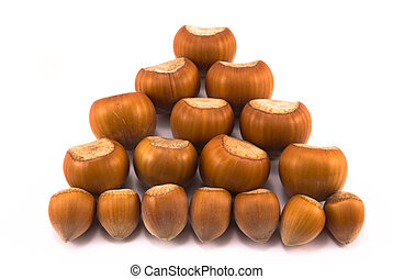hazelnuts of different sizes