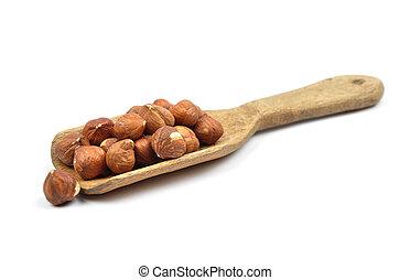 Hazelnuts on shovel