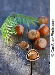hazelnuts on wooden background