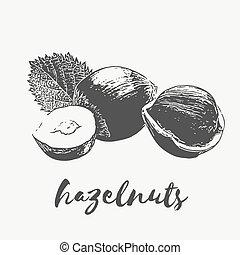 hazelnuts Organic Food