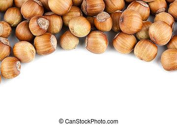 Hazelnuts pile isolated on white background