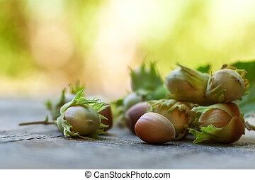Hazelnuts - Ripe hazelnuts on wooden desk. hazelnuts cluster...