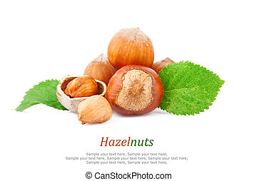 Hazelnuts, filberts in shells and green leaves, food ingredients