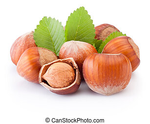 Hazelnuts with green leaves isolated on white background