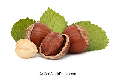 Hazelnuts with green leaves (isolated) - Hazelnuts with...