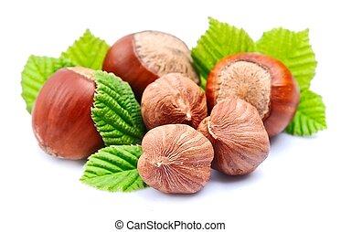 Hazelnuts with leaf on white background