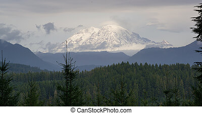 Hazy Atmospheric Conditions National Forest Mt Rainier - You...