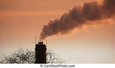 HD - Air pollution. A dead tree and smoke stack