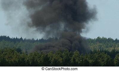 HD - Big smoke in the woods_scene1