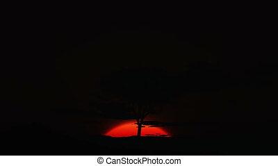 hd, -, deserto, amanhecer