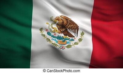 hd., fahne, mexikanisch, looped.