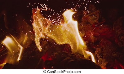 HD fire on black background. Slow motion