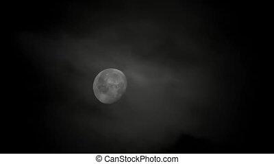 hd, -, maanlicht, nacht
