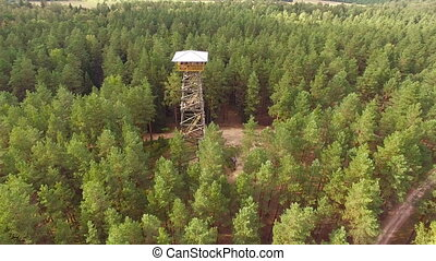 HD - Observation tower in the forest. scene03
