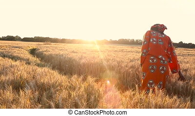 HD Video clip of African woman in traditional clothes standing in a field of crops at sunset or sunrise