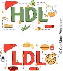 hdl, concept, icons., illustratie, ldl