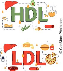 hdl, concept, icons., illustration, ldl