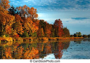 hdr, 秋の森林, 上に, 水辺地帯