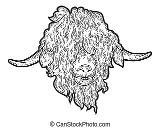 Head Angora goat. Engraving vector illustration. Sketch scratch board imitation. Black and white.