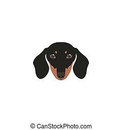 Head Dachshund Dog