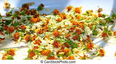 Head flowers background