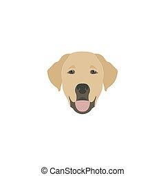 Head labrador dog.