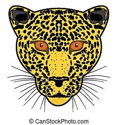 head leopard