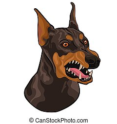 Head of a barking doberman isolated on a white background. Vector graphics.