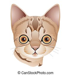 Head of a light brown kitten with big eyes, cartoon on white background