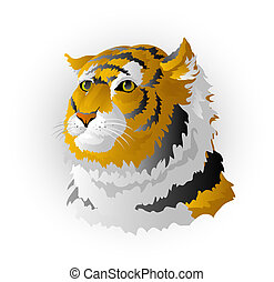 Head of a tiger