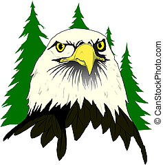 Head of an Eagle