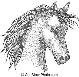 Head of arabian horse sketch symbol