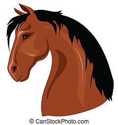 Head of brown horse with black mane against a white...
