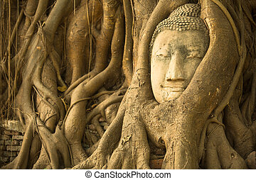 Head of Buddha in the roots of the tree, Ayutthaya, Thailand.