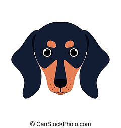 head of cute dachshund dog on white background