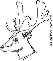 head of deer - hand drawn, sketch, cartoon illustration of...